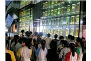 Visit of Chinese Medicine Museum in Guangzhou University of Chinese Medicine