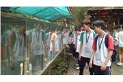 Through visiting Hu Die Gu, students could learn different species of butterflies and the inter-relationship between their growth and habitat. Hence, they can reflect on the importance of protecting the environment.