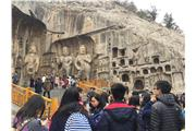 Students were visiting Longmen Grottoes.