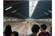 Students were visiting the Emperor Qinshihuang's Mausoleum Site Museum