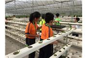 Students were visiting the Luyin Farm in Guangzhou.